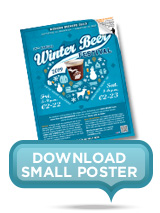 Small Winter Beer Festival Poster